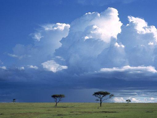 Storm_Over_the_Savannah_Masai_Mara_National_Reserve_Kenya