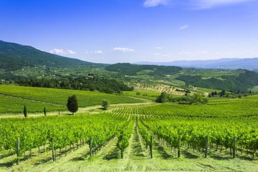 Tuscan-landscape-Tuscany-Italy